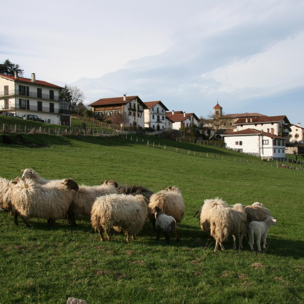 Ultzama - Navarra