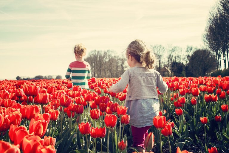 primavera contra el virus